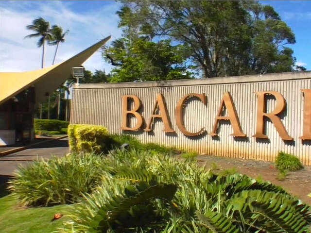 Bacardi Tour and Daiquiri Rum Cocktail, Puerto Rico