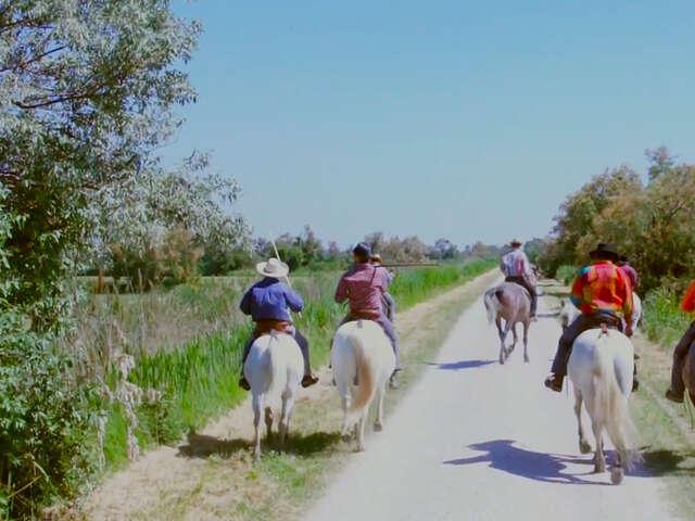 Video: Meet a Cowboy... in France