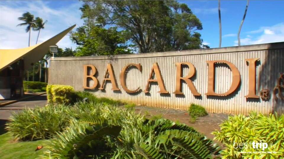 That Time Mr. Bacardi Told Us About His Family Rum - And How To Make Bacardi's Original Daiquiri