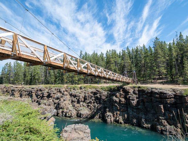 Experience the best of Yukon Adventures