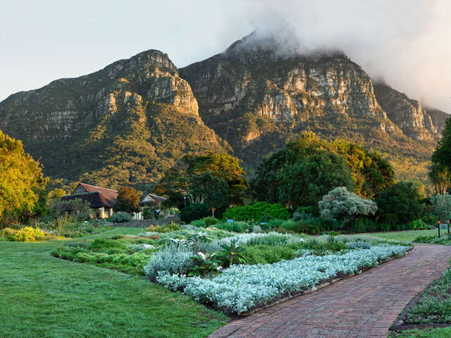 Wednesday, February 19, Table Mountain and Kirstenbosch