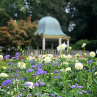 Missouri Botanical Garden – St. Louis