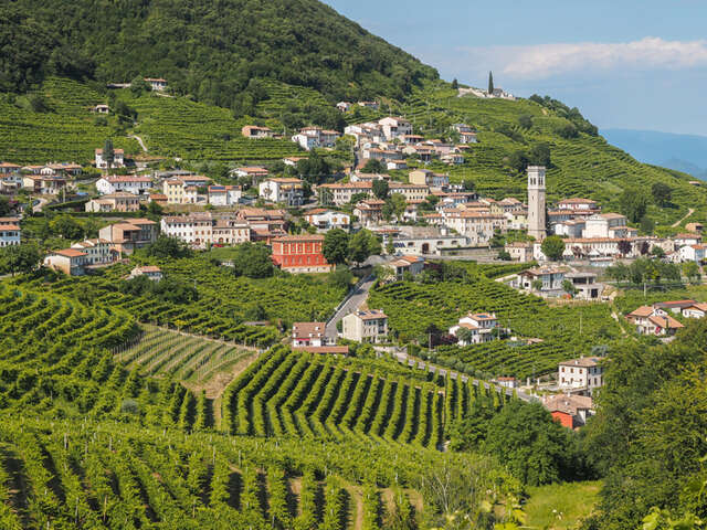 THE TIMELESS ELEGANCE AND WINE ROUTES OF VENETO