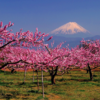 Mount Fuji and 3 Other Mountains You Need to Visit in Japan