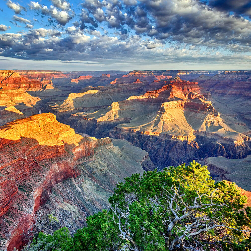 5 things you need to know about Arizona