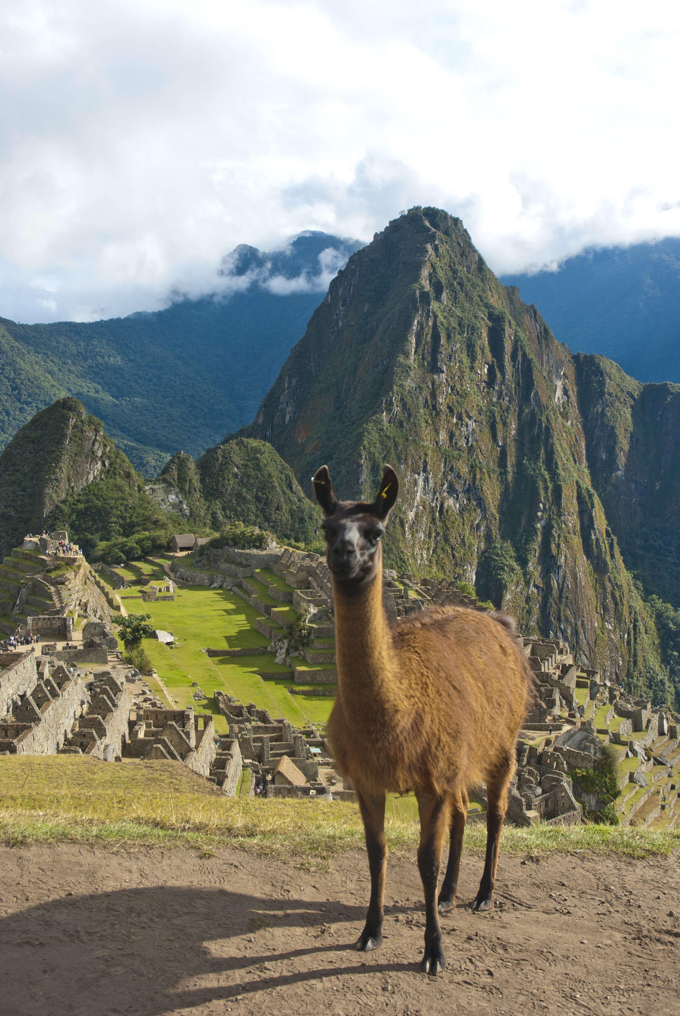 Beyond Machu Picchu: Three More Reasons to Travel to Peru