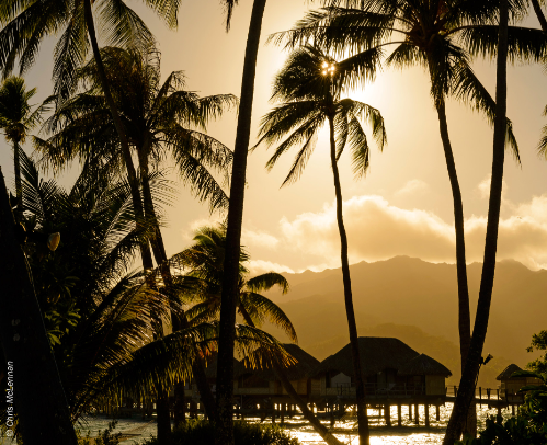 Go Island Hopping in the South Pacific