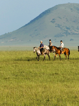 Saddle up for an Equestrian Adventure with National Geographic