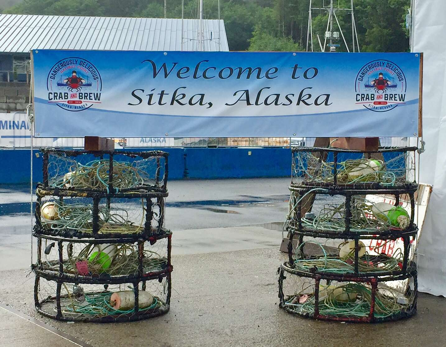 Top Souvenirs from Alaska