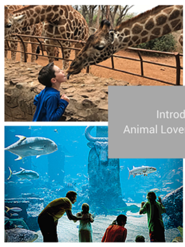 Introducing the Animal Lovers Collection from Classic Vacations