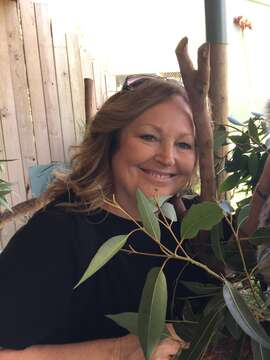 Cindy Moschner