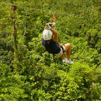 COSTA RICA  Ziplining Tour Questions