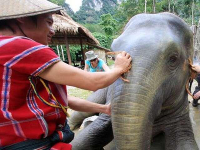 THAILAND - City Beach & Wildlife