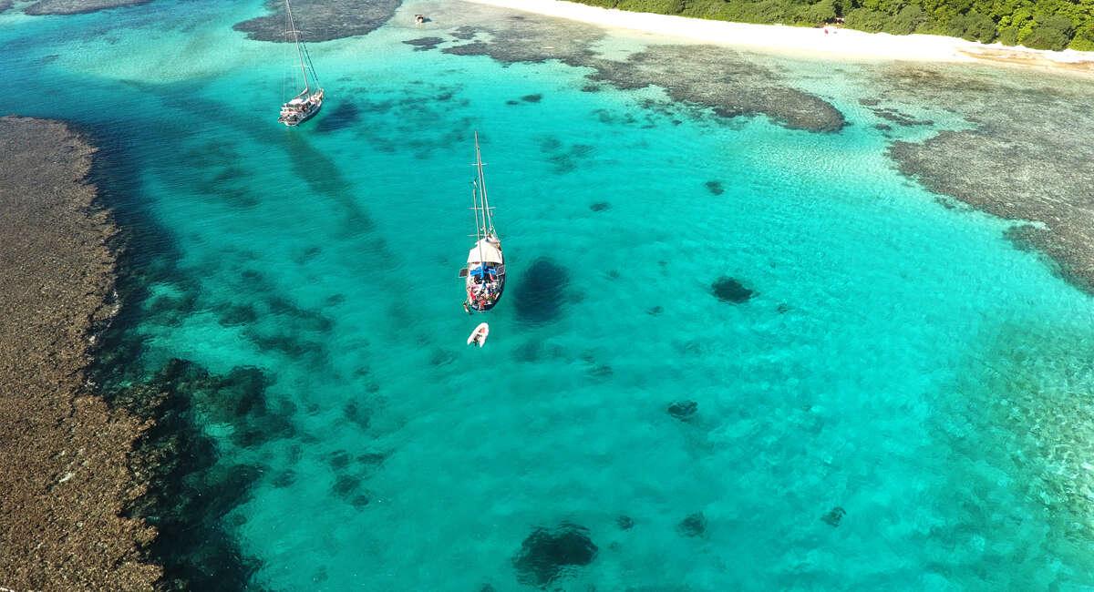 Tonga Dive Trips