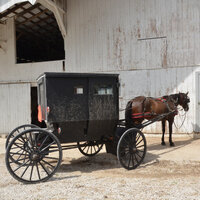 Spring in Amish Country