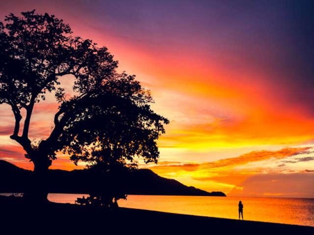 Pure Costa Rica. Pure magic. Pura vida.