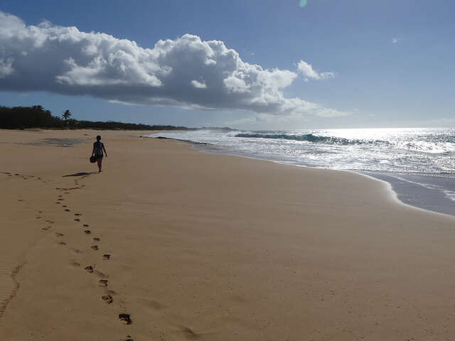 Magical Moloka'i: The Hawaii You Never Knew