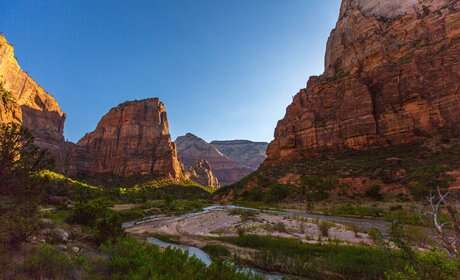 Take stunning photographs of Zion