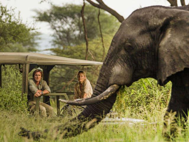 African Travel - Find Your Next Big Adventure