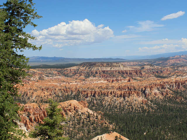 Collette - 10% Off National Parks of America