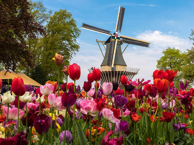 AmaWaterways Treating Guests to Once-In-A-Decade River Cruise Experience – Floriade 2022
