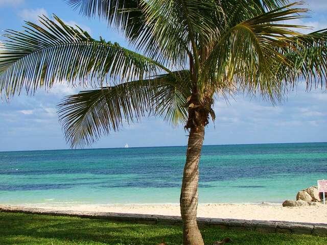 Graduation Cruise ~ Bahamas 2022
