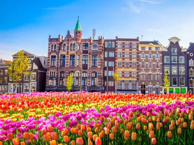 Tulips and Windmills March 26-April 04, 2022
