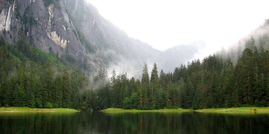 Unspoiled Wilderness - Misty Fjords National Monument - Full Day