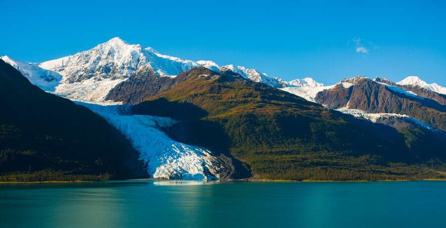 Ivy League Glaciers - College Fjord