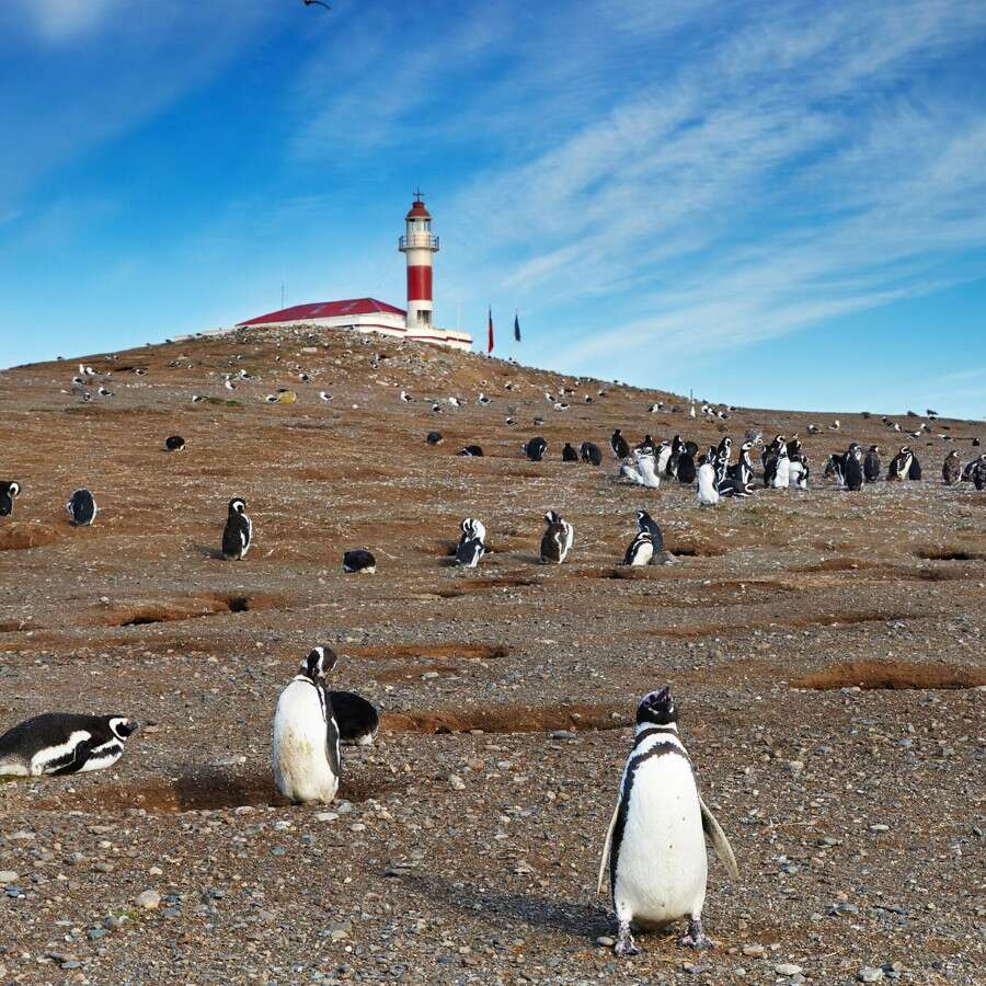 Through Patagonian waters  - At sea