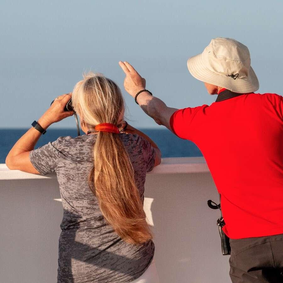 Homeward bound - At sea