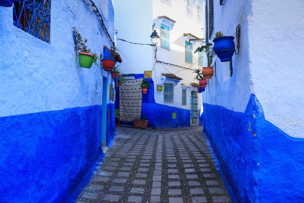 Morocco Real Food Adventure
