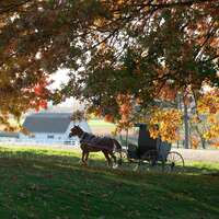 Autumn in Amish Country
