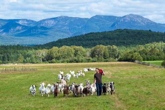 Taste more of Quebec's flavours as you visit the farms, wineries, boutique cheese shops, bakeries and chocolatiers, and allow the artisans of Charlevoix to show you why people travel from around the world to visit Quebec.