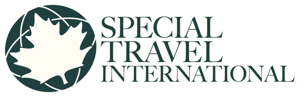 Special Travel International