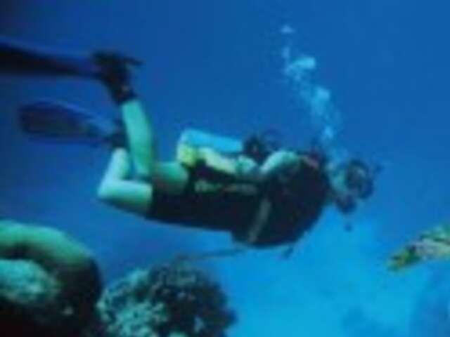 Dive to Adventure (Start Cairns, end Cairns)