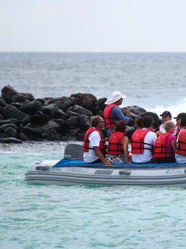 Machu Picchu & Galapagos Wonders featuring a 4-Night Cruise