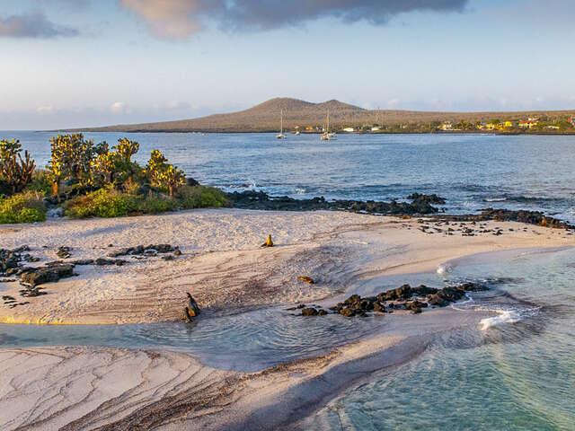 Galápagos — Central, East & South Islands aboard the Xavier III