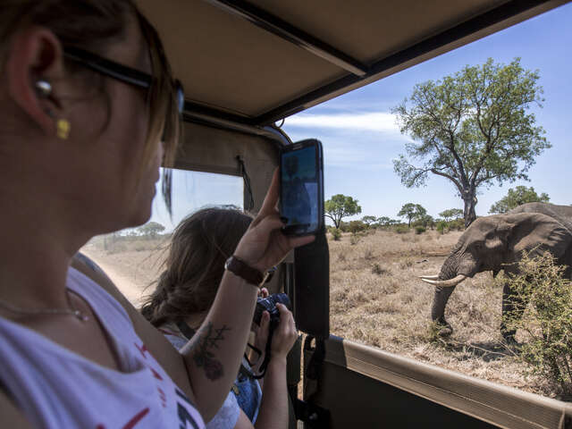 TailorMade Southern Africa: Cape Town, Kruger & Zimbabwe