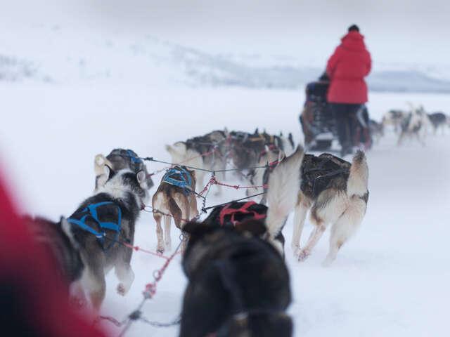 Lapland Active Adventure