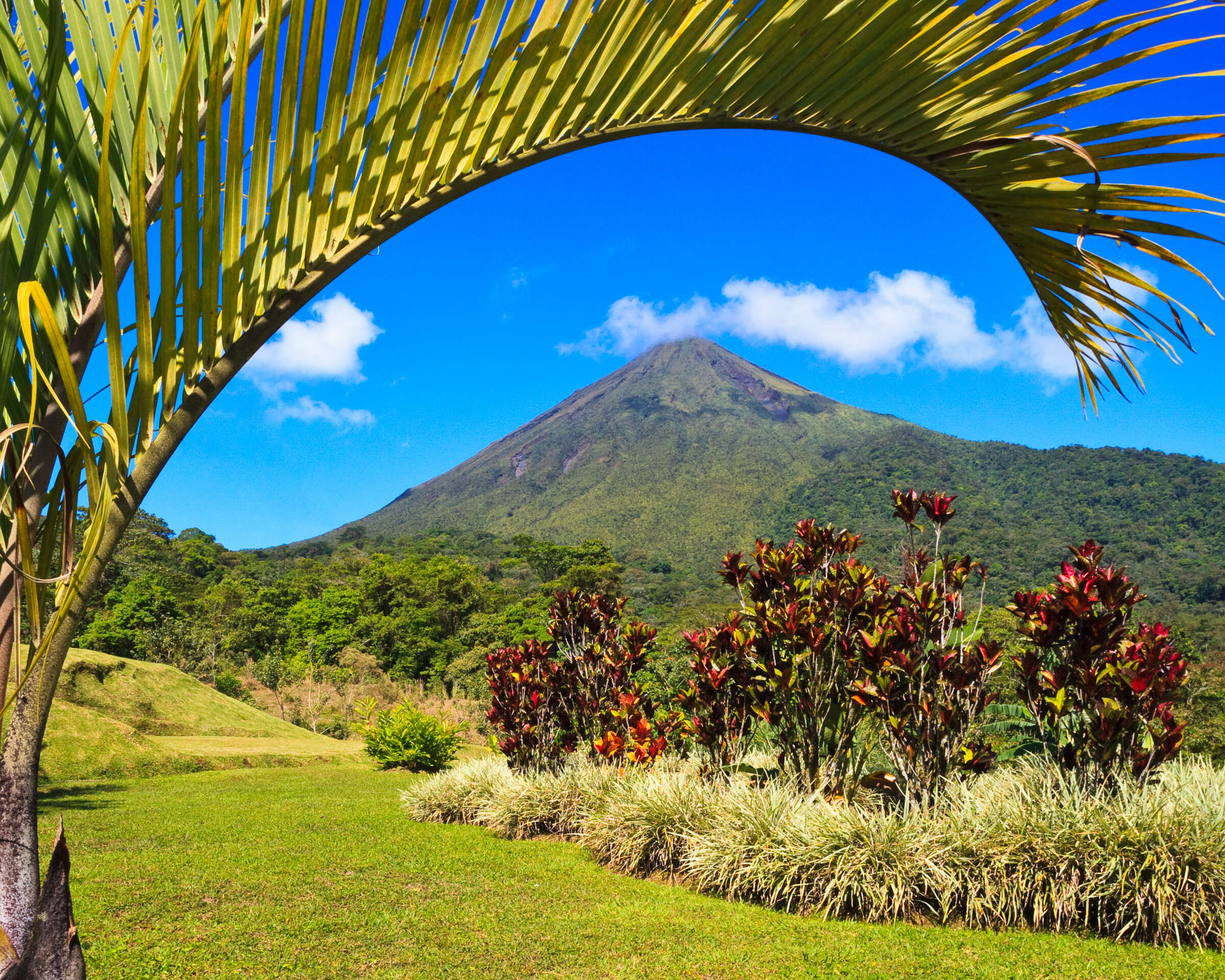 Costa Rica: A World of Nature featuring Tortuguero National Park, Arenal Volcano & Manuel Antonio National Park